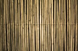 Bamboo fencing done vertically